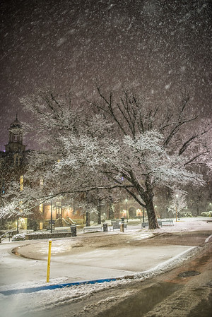 Snow Day_Morgantown_West Virginia_photo by Gabe DeWitt_March 05, 2015-557