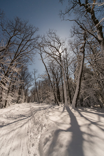 Moonlit Nights; Coopers; Rock; Winter; cross; country; skiing; Moonlight; West; Virginia; photo; Gabe; DeWitt; March; 2015; Adventure Photography; Coopers Rock; Cross Country Skiing; Favorite things; Places; Seasons; Snow; Snow Day; West Virginia; Winter; by Gabe DeWitt