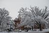 Snow Day_Morgantown_West Virginia_photo by Gabe DeWitt_March 05, 2015-2