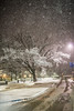 Snow Day_Morgantown_West Virginia_photo by Gabe DeWitt_March 05, 2015-556
