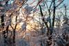 Snow Walk_Morgantown_West Virginia_photo by Gabe DeWitt_March 06, 2015-9