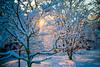 Snow Walk_Morgantown_West Virginia_photo by Gabe DeWitt_March 06, 2015-18