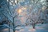 Snow Walk_Morgantown_West Virginia_photo by Gabe DeWitt_March 06, 2015-18-2