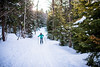 Cross Country Skiing_White Grass_Canaan Valley_West Virginia_photo by Gabe DeWitt_March 08, 2015-169
