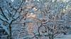 Snow Walk_Morgantown_West Virginia_photo by Gabe DeWitt_March 06, 2015-21