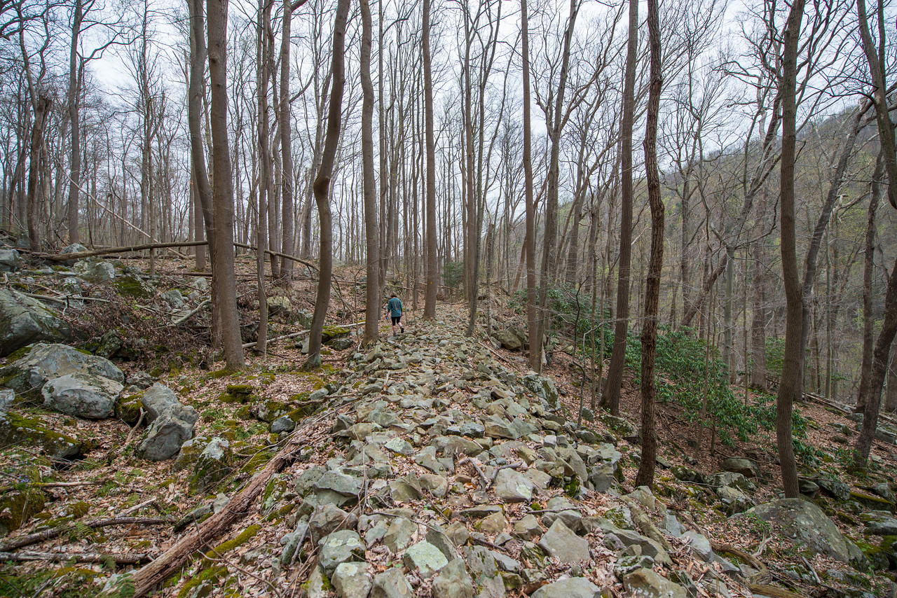 NCM15010; Allegheny Trail; Cheat River; DNR; Friends of the Cheat; Gabe DeWitt; TNC; The Nature Conservancy; The Nature Conservancy Magazine; West Virginia; photo by Gabe DeWitt; spring Views from the Allegheny trail. Amanda walking across the first rock bridge/butress