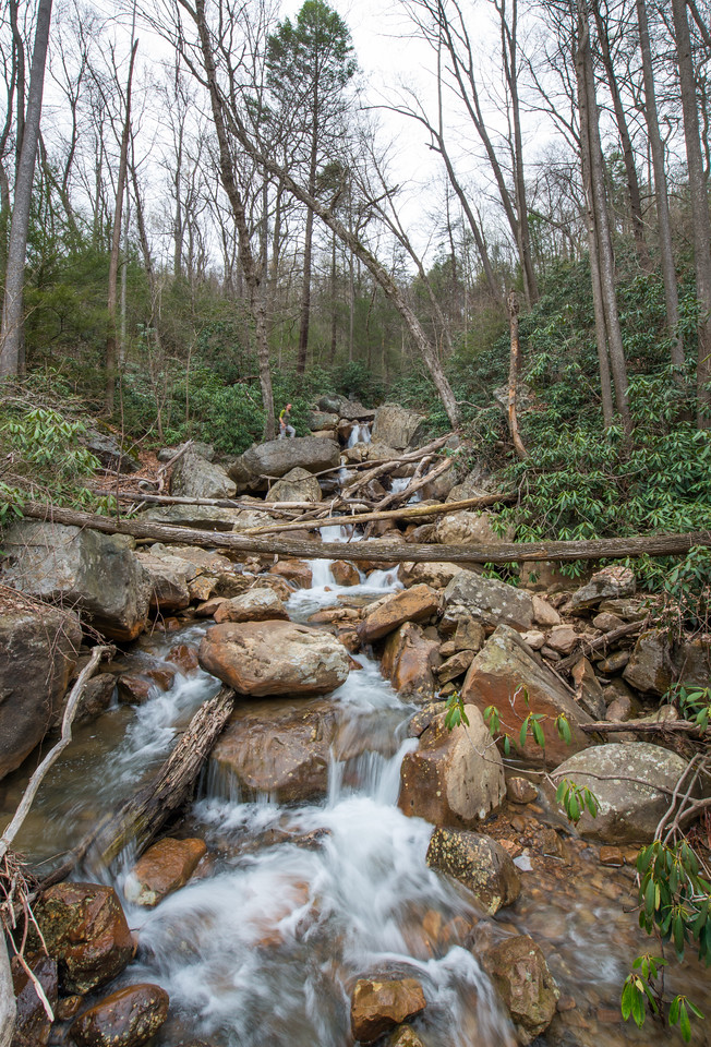 NCM15010; Allegheny Trail; Cheat River; DNR; Friends of the Cheat; Gabe DeWitt; TNC; The Nature Conservancy; The Nature Conservancy Magazine; West Virginia; photo by Gabe DeWitt; spring Views from the Allegheny trail. Cascading tributary stream along the trail.