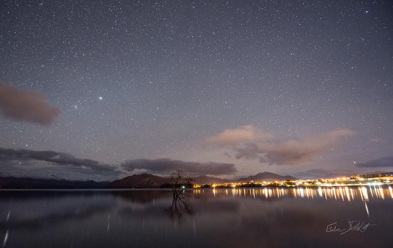 Lone_Tree_at_night_New_Zealand_20150516_1