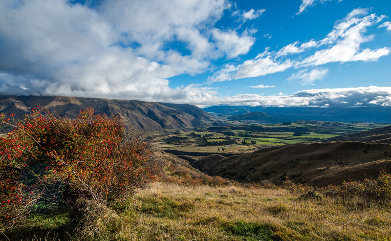 Country_side_New_Zealand_20150516_27