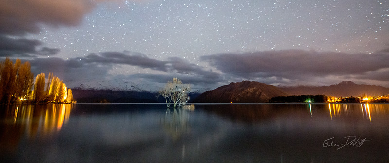 Lone_Tree_at_night_New_Zealand_20150516_13