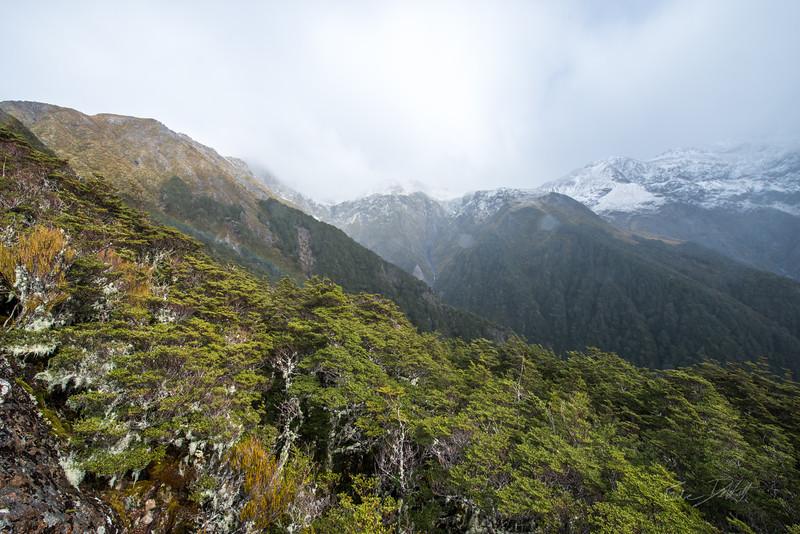 Avalanche_Peak_Arthurs_Pass_New_Zealand_20150508_26