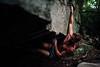 Dylan-Jones-Bouldering-Coopers-Rock-WV_August_25_2015_83