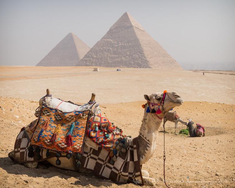 20150301_TripToEgypt_306