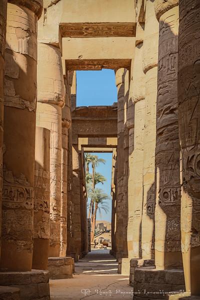 20150305_TripToEgypt_2721