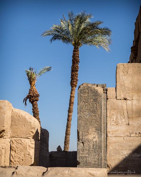 20150305_TripToEgypt_2751