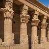 20150303_TripToEgypt_1134