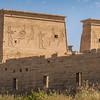20150303_TripToEgypt_1094