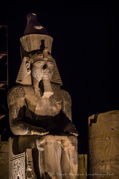 20150304_TripToEgypt_2173