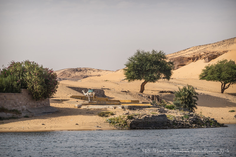 20150302_TripToEgypt_645