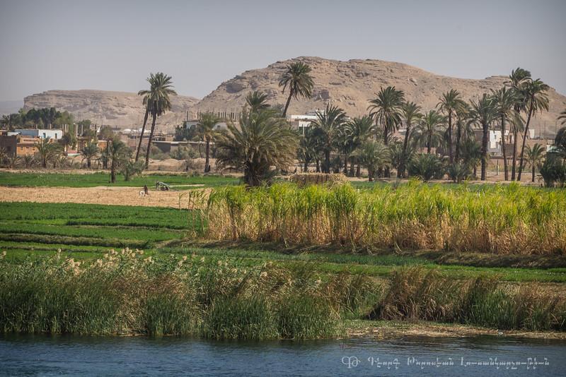20150304_TripToEgypt_1745
