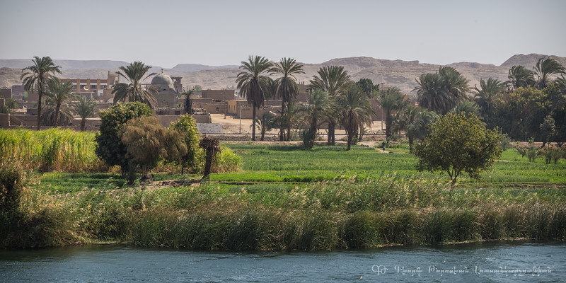20150304_TripToEgypt_1742