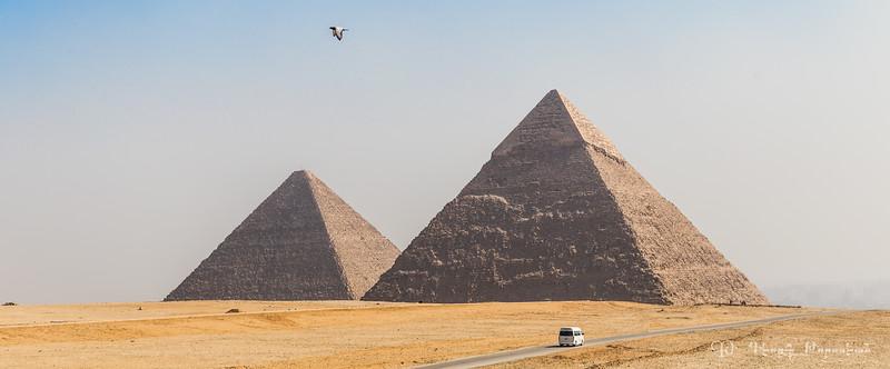 Pyramids, bird and bus