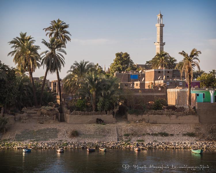 20150304_TripToEgypt_1984