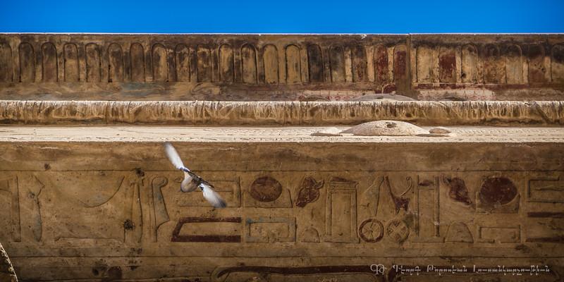 20150304_TripToEgypt_1689