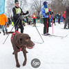2015 Loppet Saturday Chuck & Don's Skijoring Loppet and One-Dog National Championship, January 31, 2015