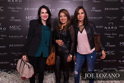 Meic_RedCarpet_018