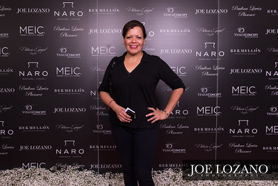 Meic_RedCarpet_014