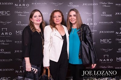 Meic_RedCarpet_002