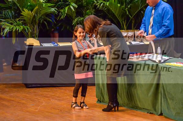 Science Fair Awards South Area