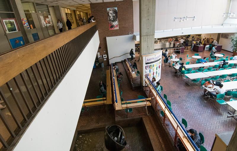 General Campus Scenes