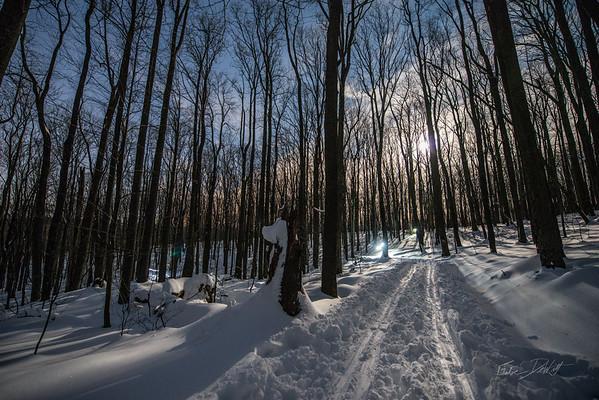Coopers-Rocks-WV-Skiing-Winter-Storm-Jonas-18