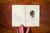 Moleskine-Sketches-by-Gabe-DeWitt-428