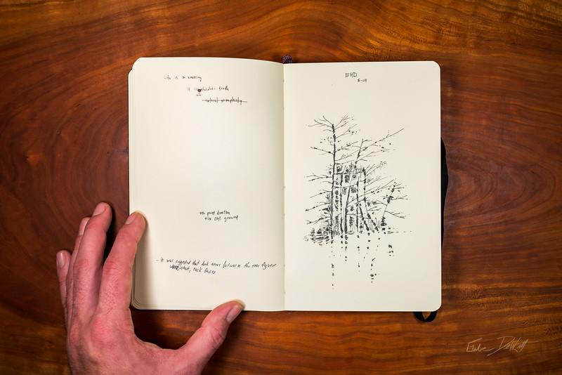 Moleskine-Sketches-by-Gabe-DeWitt-67