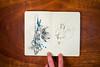 Moleskine-Sketches-by-Gabe-DeWitt-330