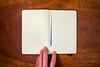 Moleskine-Sketches-by-Gabe-DeWitt-444