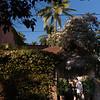 joe-lozano-photography-wedding-destination-bucerias-MJ-016