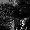 joe-lozano-photography-wedding-destination-bucerias-MJ-017