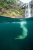 Hidden-Falls-Hilo-Hawaii-583