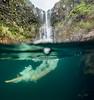Hidden-Falls-Hilo-Hawaii-547