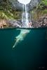 Hidden-Falls-Hilo-Hawaii-571
