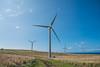 Wind-Farm-Hawaii-86