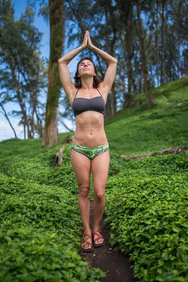 Pololu; Valley; Hawaii; 111; Big Island; Black Sand; By Gabe DeWitt; HW; Jungle; Nikon; Nikon D800; Places; Pololu Valley; Travel; Winter in Hawaii; beach; island