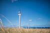 Wind-Farm-Hawaii-20