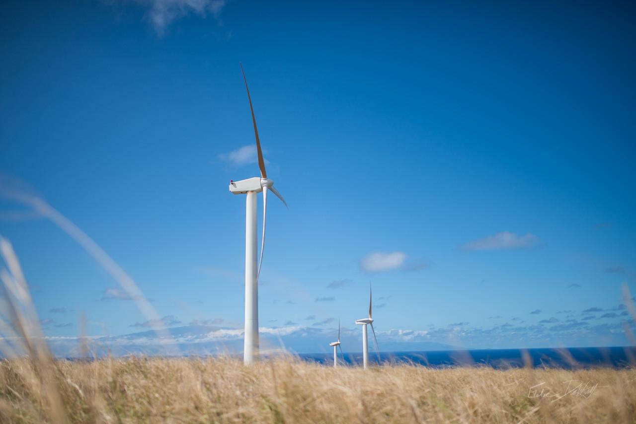 Wind; Farm; Hawaii; Big Island; By Gabe DeWitt; Energy; Equipment; HW; Nikon; Nikon D800; Places; Structures; Travel; Wind Farm; Wind Turbine; Winter in Hawaii; island; media; stock photos; work