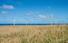 Wind-Farm-Hawaii-58