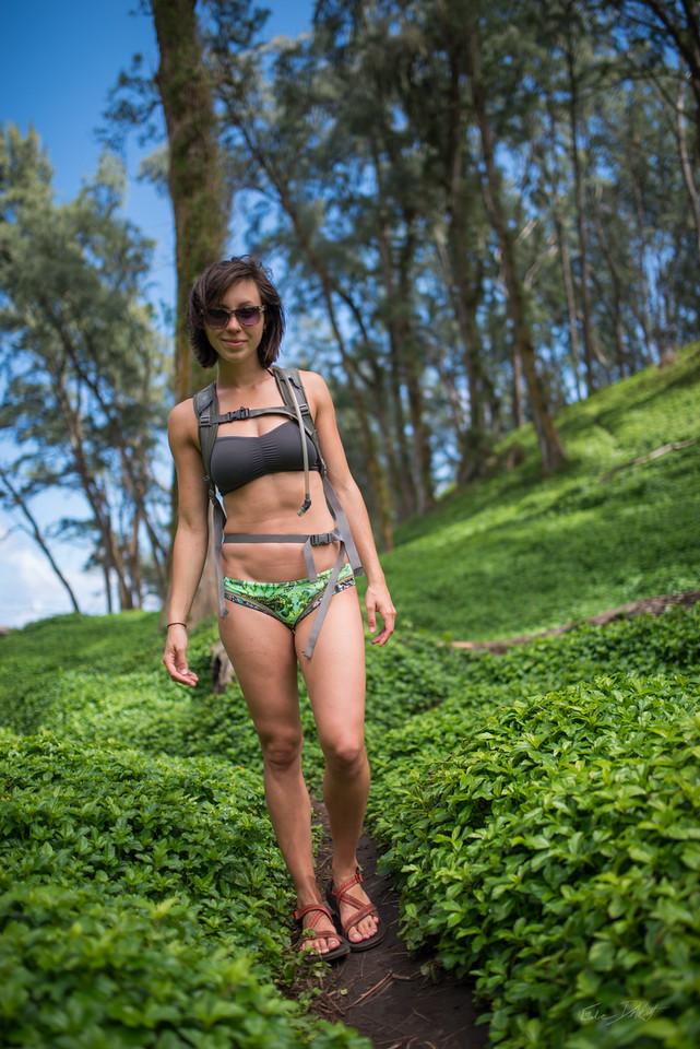 Pololu; Valley; Hawaii; 100; Big Island; Black Sand; By Gabe DeWitt; HW; Jungle; Nikon; Nikon D800; Places; Pololu Valley; Travel; Winter in Hawaii; beach; island
